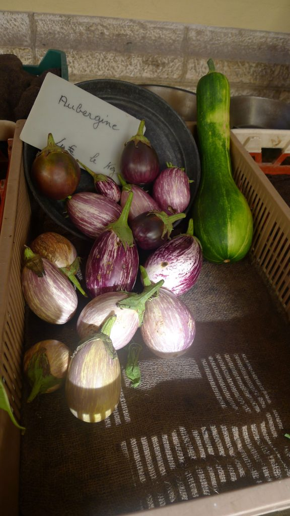Eggplants in the market.